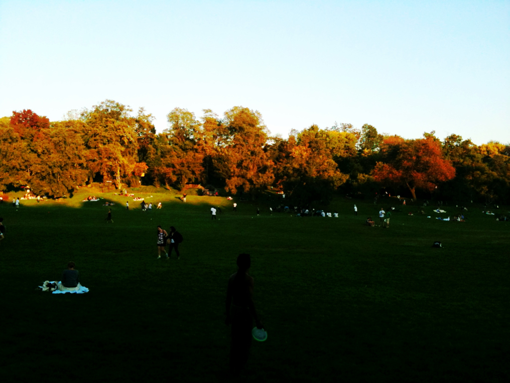 Beautiful sunset, Prospect Park.