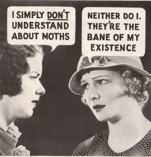 vintagegal:  Moth Proofing Advertising 1937  [fucking moths…]