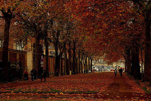 allthingseurope:  Autumn in Montparnasse, Paris (by nanda_uforians)