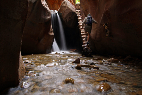 trailhikers:  Kanarra Creek Canyon