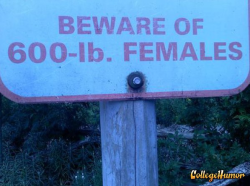 collegehumor:  Beware of 600 lbs. Females Don't be offended, it's because their personalities are so captivating.