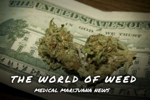 Each week WeedPornDaily accumulates news on the world of weed, keeping you up to date with marijuana busts and cannabis cures. Want To Help With Cannabis Legalization? Sign These 11 Petitions! Dutch Decide To Treat 'Strong Marijuana' As A Hard Drug U.S. attorneys in California today sent letters to medical marijuana dispensaries informing them that they must close within 45 days Feds Announce Calif. Pot Dispensary Crackdown Did Cannabis Prohibition Kill Steve Jobs? (Read more!)
