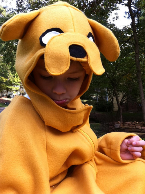 "adventuretime:  adventuretimefan:  Home-made Jake Costume ""My little boy is convinced he IS Jake, and no other Halloween costume  would do this year. I, of course, obliged…and made his day.  We love  Adventure Time!"" — Helen  Great job, Helen.  Helen! Adopt me as your 26 year old son and make me one please!"
