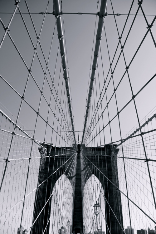 Brooklyn Bridge - Lines
