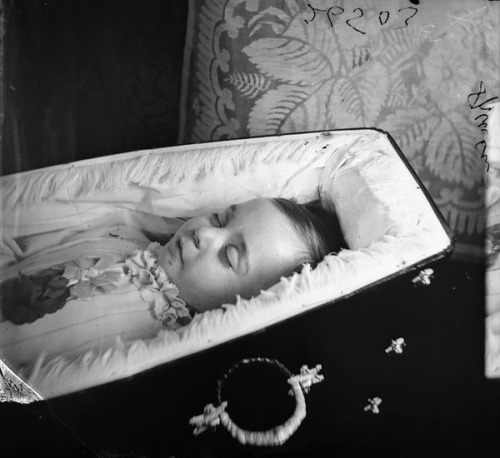 A postmortem photograph of a small child in a beautiful coffin.