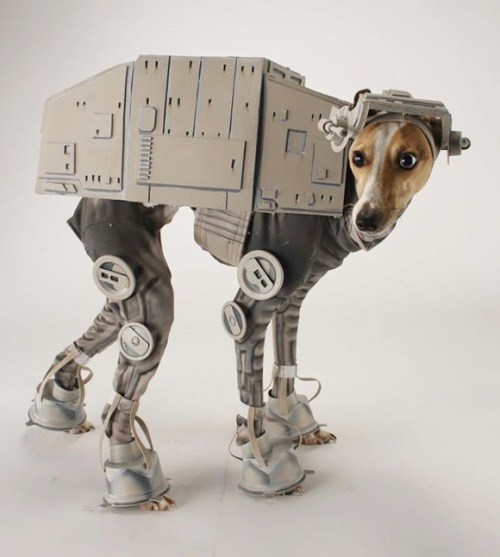 Star Wars Strike Again … Now Dogs Can have Her Own AT-AT Costume ! Dog AT-AT costume by Laika artist Katie Mello.