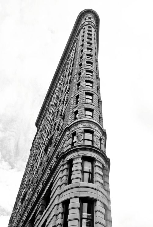 twenty two | the flatiron building i've always wanted to take a picture of this famous icon in new york but never got the chance to be a tourist in my hometown.  i absolutely love this area of the city and best of all, i got a shake shack burger.  yum yum yum.
