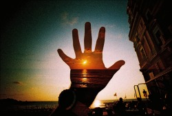 lomographicsociety:  Lomography Camera of the Day - Lomography LC-Wide Get it online!