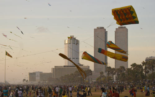 Kites, Galle Face Green (2011)