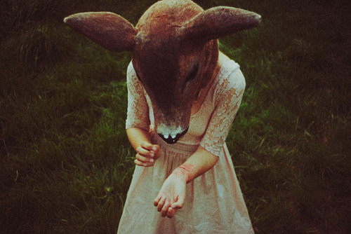 drivved:  wound by laura makabresku on Flickr.