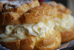 candyexpress:  Cream Puffs by Azra (by fiveriversmetroparks)