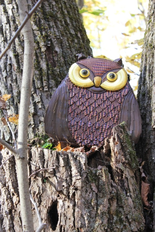 My Amliya Owl Bag feels at home in the woods near my cottage.