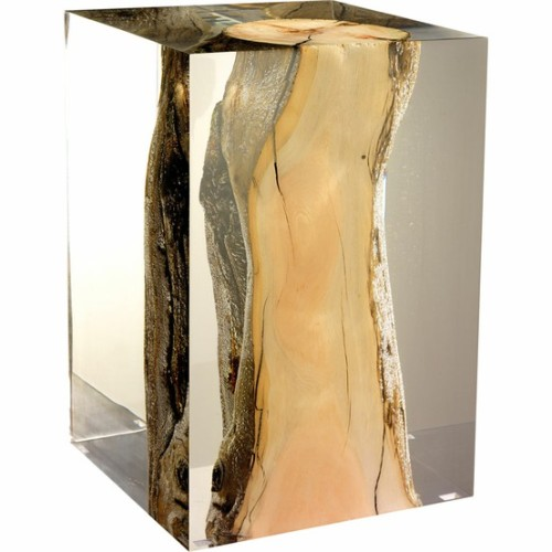 driftwood trapped in lucite! amazing!
