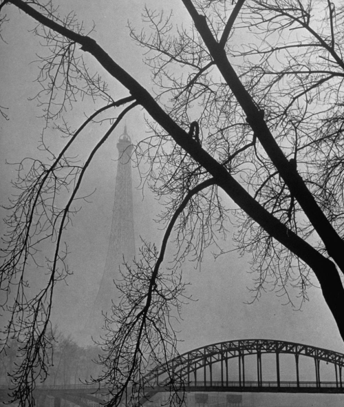 thirdestate:  Passerelle Debilly bridge on a foggy winter day, Paris 1946