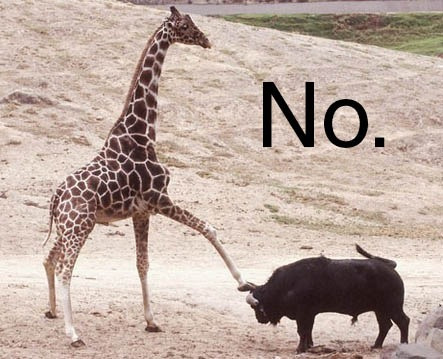 """No, means no,"" said the giraffe to the bull."