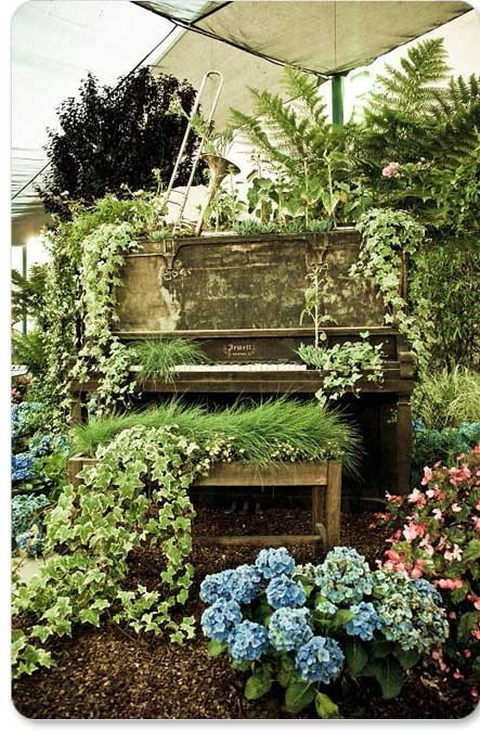 Do you have an old piano? It may not look great in your home, don't throw it out (or maybe you should). Put it out in the garden and let mother nature work her magic. This is so beautiful and somewhat romantic.