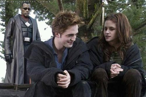 Como a saga Crepúsculo deveria terminar. Twilight´s end at Blade´s hands!