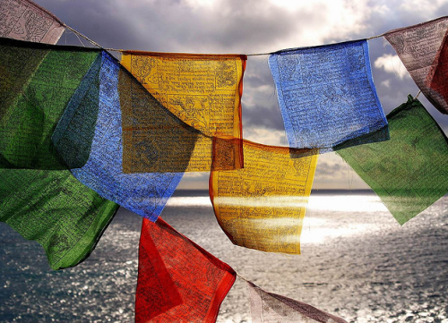 agapyinateacup:  Tibetan prayer flags.