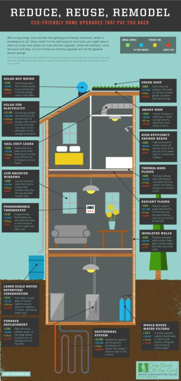 Infographic: Green Home Improvements That Pay You Back (Source: One Block Off The Grid)
