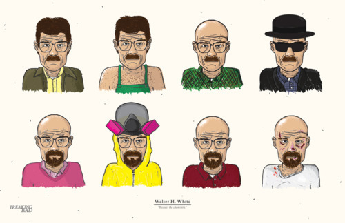 mylifeslikeabadmovie:  evolution of walter white