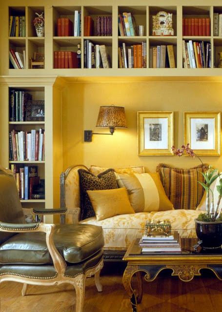 Two-in-One Room::home-library and living room""