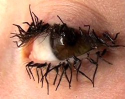 What is with this new craze of doing fly leg eyelashes? I think its so weird. I found some more pretty lashes for halloween though.  Which ones do you guys like best?