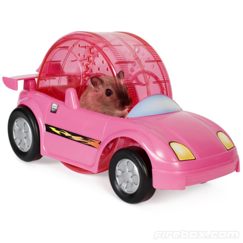 Hamster Power Racer! Available at Firebox.