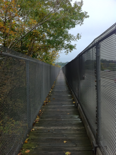 Bike/pedestrian walkway at Valley Forge, PA.