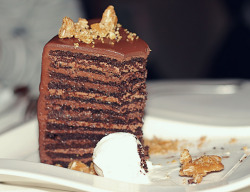 24-layer chocolate Nutella cake by Kirsten Marie Hutton on Flickr.