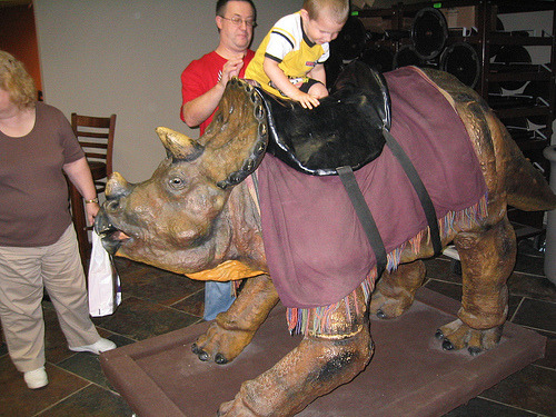 A saddled triceratops at the Creation Museum near Petersberg, KY. I am not sure if people could get more stupidered. Derrr, dinos and humans.
