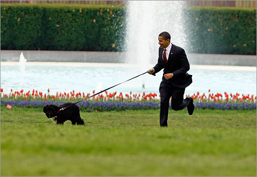 jizzandglitter:  happydoge:  I can't believe this is what our president and vice president spend their time on. We're in 15 trillion dollars of debt, and millions of people are homeless, and abortion is still legal, and instead of signing bills to fix these things our president is doing this. Well I'm glad you're having fun, you fucking bitch. Fuck the United States. /rant    I like abortion.   yea…because apparently our republican presidents never took a vacation? Also how in the holy fuck is taking a half hour walk with your adorable dog Bo a bad thing? Of all people Barry here probably needs to get out for a little sunshine.