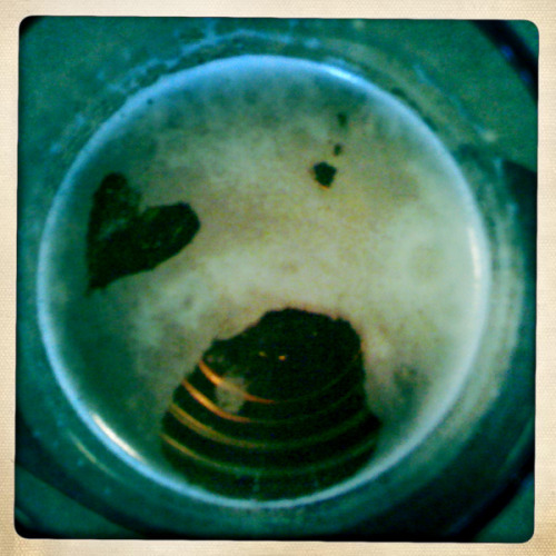 My Beer Loves Me