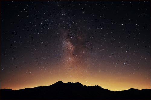 15steep:  stars over joshua tree (by jody9)