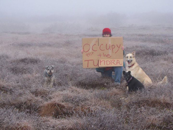 latimes:  'Occupy the Tundra': One woman's lonely vigil in bush Alaska  Photo: The Facebook image of Diane McEachern's lonely vigil has resonated — in a big way. Credit: Diane McEachern.  Awesome.