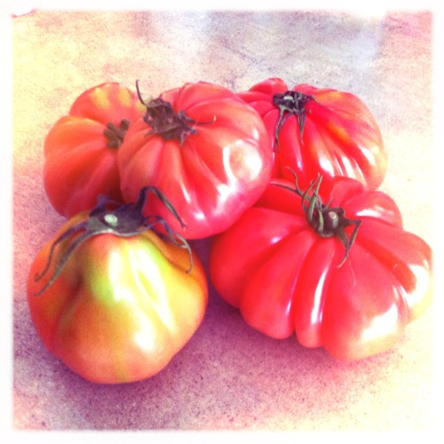 Heirloom Tomatoes from Kingsland Farmer's Market Chunky Lens, Ina's 1935 Film, No Flash, Taken with Hipstamatic Simple, beautiful, delicious! Mother nature you make cool things to eat :) PS- I would have posted a photo of the almond croissant*, but that was not so delicately downed in about 3 seconds flat *La Creperie - seriously the best croissants in the city! Try their Pain au Chocolat which is their super flaky croissant filled with dark chocolate or Vanilla croissant filled to the brim with vanilla pastry cream…..right after you try the almond one of course :). Their Almond Brioche is pretty amazing as well, but don't just take my word for it! Just get eating!