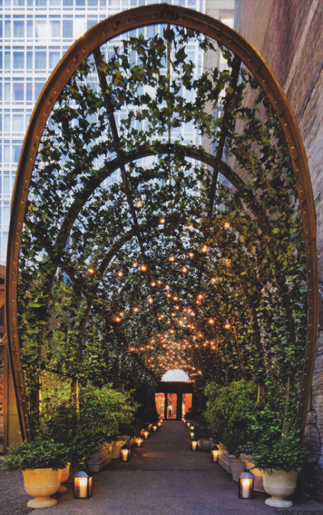 The ultimate urban garden: entrance to the New York Mondrian SoHo, design by Barry Rice Architect, photograph by Richard Powers. Oxidized steel frame and polycarbonate panels.  Featured in Interior Design, April 2011.