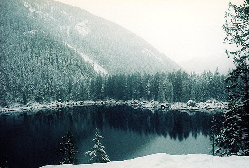 naturephilia:  Lena Lake, Olympic National Forest, Washington.