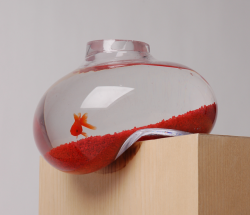 photojojo:  It's time the Photojojo office got a fish, a fish that lives in a tank like this. Designed by Psalt studio. via Zeutch.
