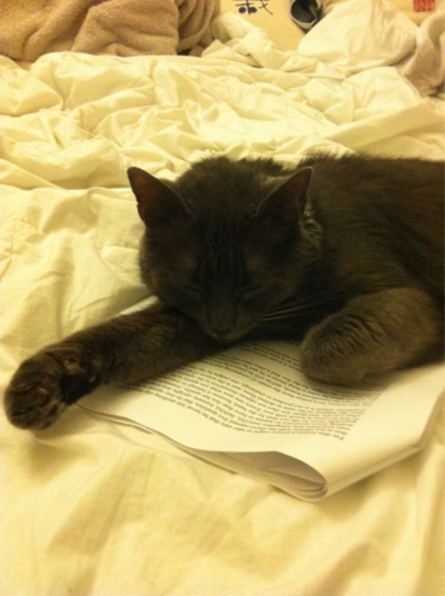 I love reading!! But sometimes I fall asleep.