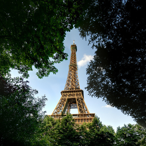 Paris - Eiffel Tower in the Trees by meenaghd on Flickr.