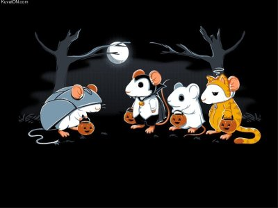 What do mice dress up as on Halloween?  via world-shaker