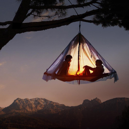 Tree camping in the ultimate tree house.