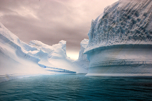 dearscience:  Iceberg bay (by Bogdan Ionescu)  Deepwater Ice Soloing anyone??