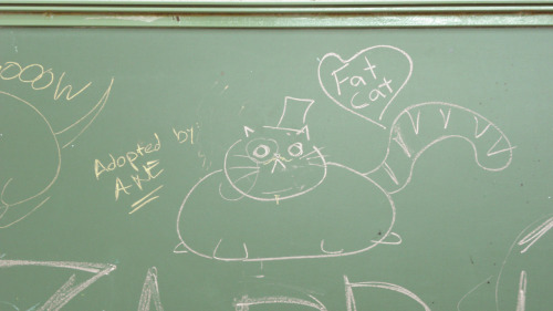 choquefrontal:  My classmate's an artist, she has designed the perfect pet for me. Don't you find it lovely?