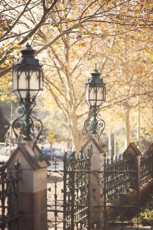 Autumn in Sydney, Australia (via beautifully, suddenly: sydney | autumn is a second spring …)