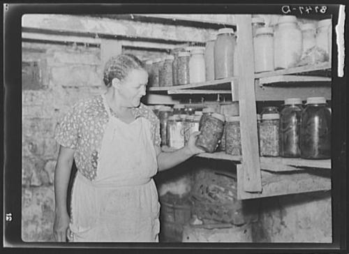 Wife of Negro tenant farmer, rehabilitation client. Jefferson County, Kansas. Vachon, John, 1914-1975, photographer. CREATED/PUBLISHED 1938 Oct.