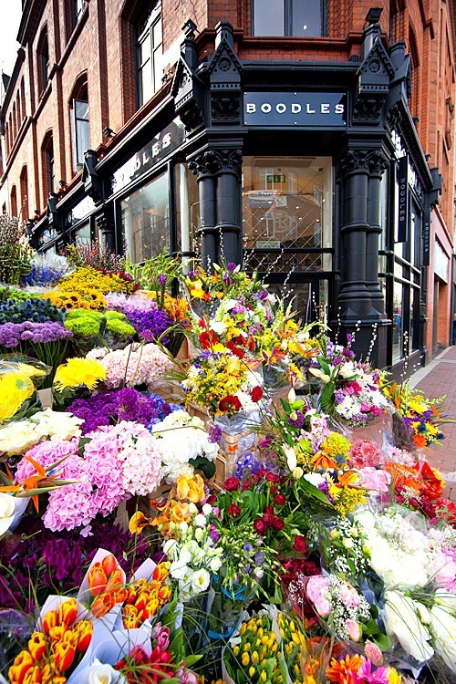 Flowers for sale, Dublin, Ireland (via 17939 - Photograph at corporatefineart.com)