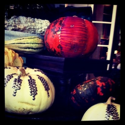 gorgeous gourds & pretty pumpkins @ anthro!