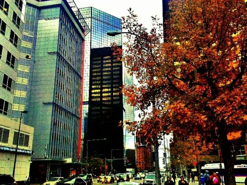 #Denver  #CO  #HDR  #downtown  #colourful  #android  #cityscape  #fall (uploaded with Streamzoo.com)
