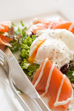 montegos:  dietcokeandasmoke:  foodistheword:  Smoked Salmon and Poached Egg  amazing combo  I wish I liked eggs…